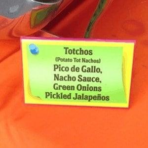 Totchos at Disney Social Media Moms