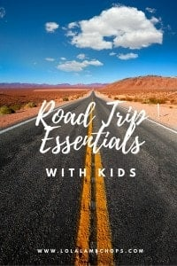 Road Trip Essentials with Kids