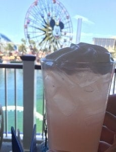 Nonalcoholic Beverages at Disneyland