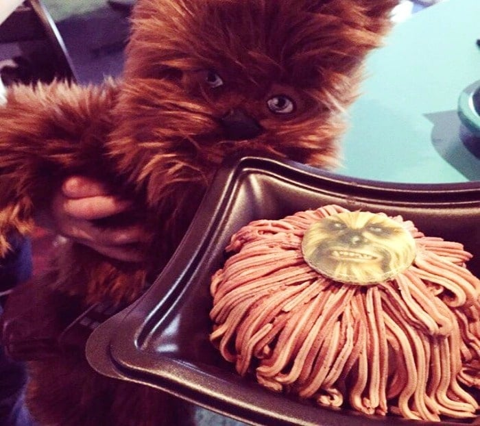 Chewbacca Cheesecake- the best Disneyland snack.