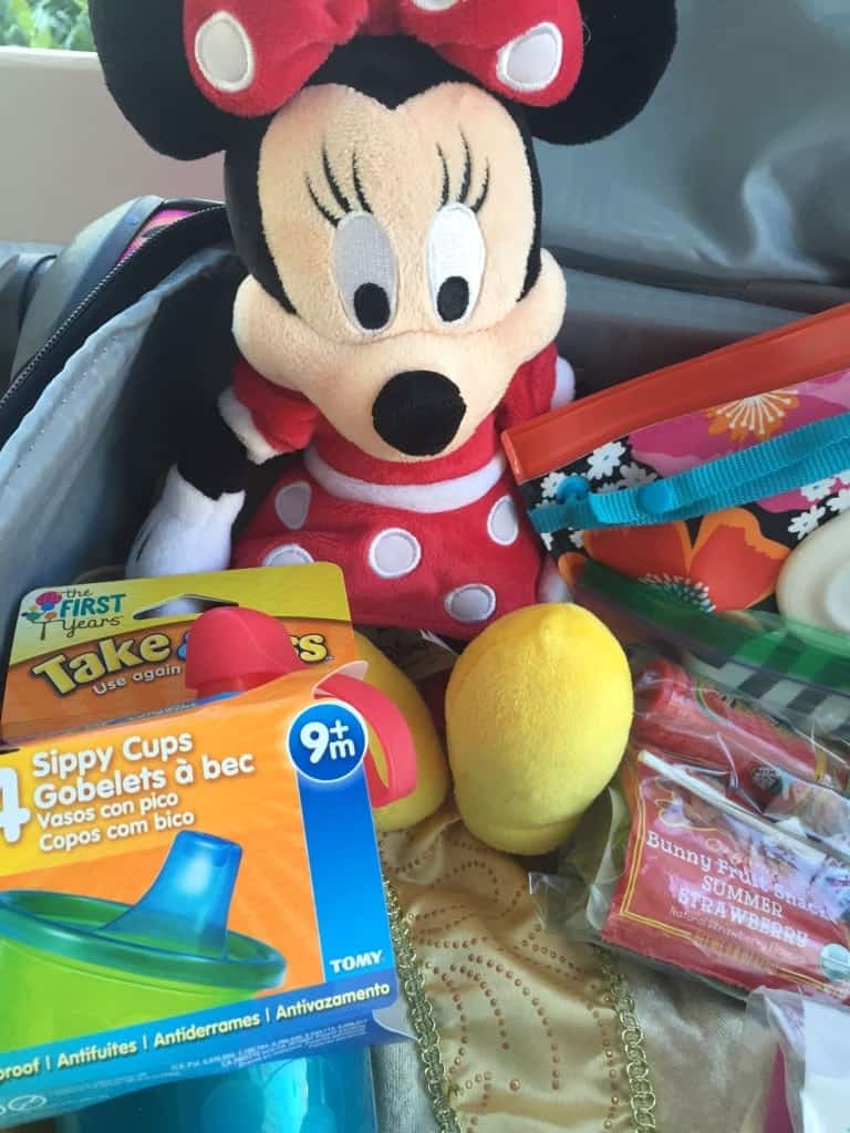 Minnie Mouse always comes with us to Walt Disney World