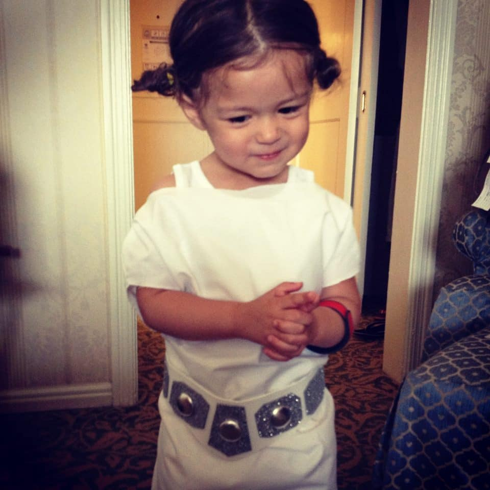 Homemade Princess Leia Costume