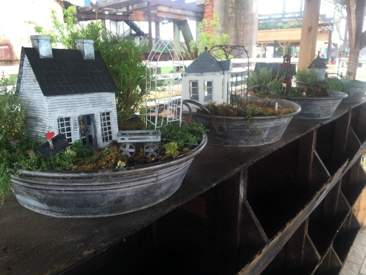 Fairy Gardens in Waco, TX at Magnolia Market at the Silos