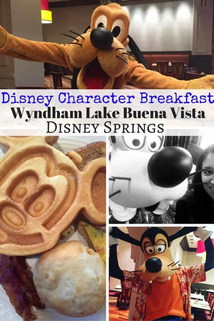 Try the Disney character breakfast at Wyndham Lake Buena Vista across the street from Disney Springs! This resort is on Disney property, has a delicious buffet and is cheaper than Chef Mickey's!