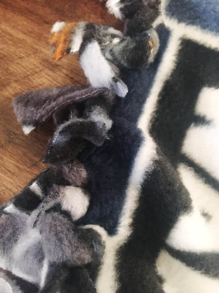 DIY No-Sew Star Wars Blanket for Dogs