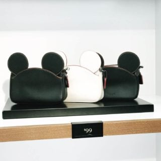 Get a wristlet for $99 at the Disney Coach Outlet. These are so cute!
