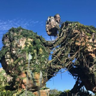 How to avoid 2 hour waits at Pandora - The World of Avatar