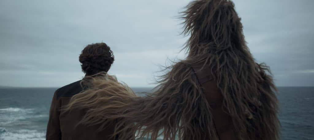 Solo tells the story of the friendship of Han Solo and Chewbacca.