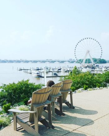 Best Things to Do at the Gaylord National Harbor