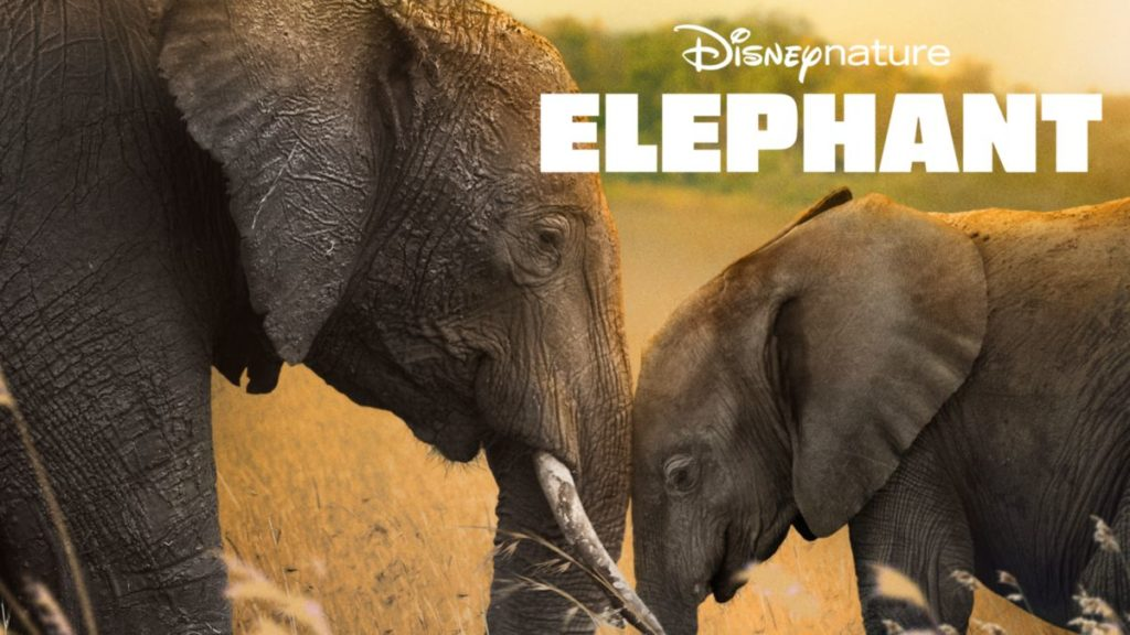 Earth Day Shows on Disney Plus