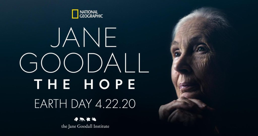 Jane Goodall The Hope on Disney Plus