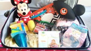 Disney World Packing Tips for Toddlers